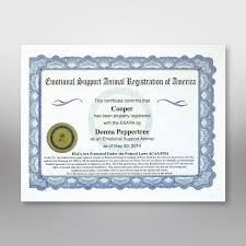 Professional Plus Esa Certification Kit Esara Immediate