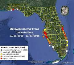 Tide Chart For Venice Fl Red Tide Blooms Increase On Floridas West Coast Wusf News