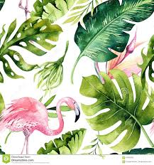 Mod Le Sans Couture D Isolement Tropical Avec Le Flamant Dessin