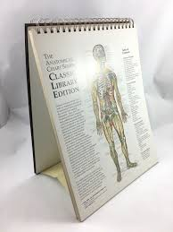 World S Best Anatomical Charts The Worlds Best Anatomical Chart The Anatomical Chart By Peter Bachin And Ernest Beck 2000 Spiral