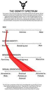 Spectrum Chart My Gender Sexuality Identity Spectrum Chart Ive Complet