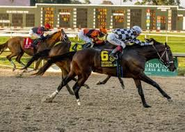 Drf Com Pdf Charts Pound For Pound Gives Trainer First Stakes Win In Louisiana