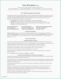 Airline Resume Samples Airline Mechanic Resume Examples Awesome Gallery Aircraft Mechanic
