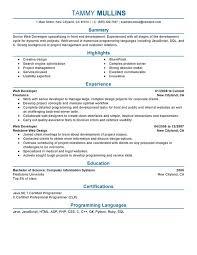 ... Web Developer Computers And Technology Web Developer Resume Sample  Software Developer Entry Level Resume Web ...