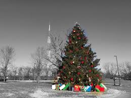 Polar Express Lights Brentwood Christmas Tree Lighting Live Polar Express
