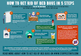How to Get Rid of Bed Bugs Fast: 8 Best Bed Bug Traps, Sprays and ...