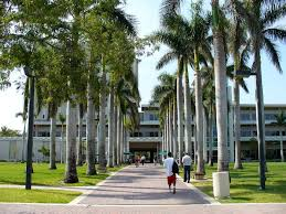 university of miami sat scores acceptance rate walkway leading to the otto g richter library on the campus of the university of