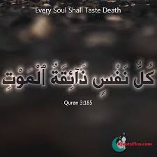 Islamic Quotes About Life Love And More 40 Top Islamic Blog Adorable Tamil Muslim Imaan Quotes