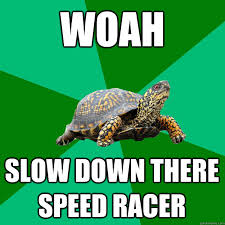 WOAH SLOW DOWN THERE SPEED RACER - Torrenting Turtle - quickmeme via Relatably.com
