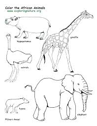 Coloring Pages Forest Animals Forest Coloring Page Forest Animals Coloring Page Coloring Pages