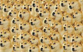 doge wallpaper android. Contemporary Doge Doge Wallpapers  Album On Imgur With Wallpaper Android N