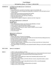 Air Jamaica Flight Attendant Cover Letter Abcom Buffet Resume