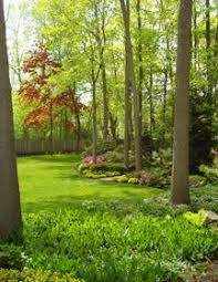 Small Picture 11 best Gardens on a woodlands edge images on Pinterest Garden
