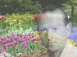 Resultado de imagen de doctor bach