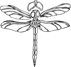 Small Picture Coloring Pages Animals Dragonfly Fairy Coloring Page Dragonfly