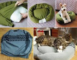 diy pet bed a new job for dogs at the airport awesome cat facts