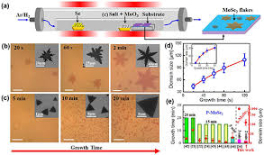 Ultrafast nucleation and growth of <b>high</b>-<b>quality</b> monolayer MoSe2 ...