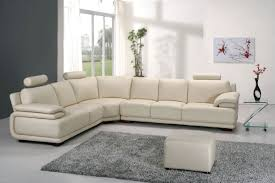 Living Room Couches Remarkable Living Room Couches Twuzzer