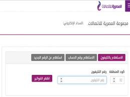 استعلم عن فاتورة يوليو للتليفون الآرضي على المصرية للاتصالات