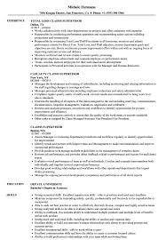 Supervisor Sample Resume Claims Supervisor Resume Samples Velvet Jobs 11