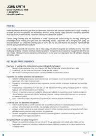 Curriculum Vitae Writer Best Curriculum Vitae Writing Services Nyc Professional Resume