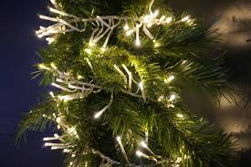 Warm Led Tree Lights Led Twinkle Cluster Christmas Lights Warm White Transparent Cable