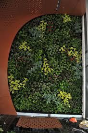 vertikln zahrady a zelen stny - Hledat Googlem