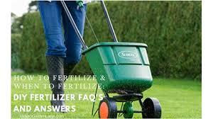 how to fertilize lawn when to fertilize diy fertilizer faq s