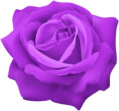 Purple Rose Flower Clip Art Image   Gallery Yopriceville - High-Quality  Images and Transparent PNG Free Clipart