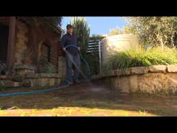 removing moss from pavers