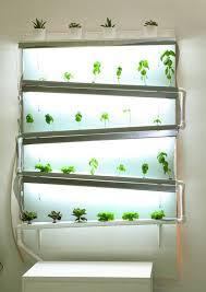 hydroponic herb garden. A Fully Functional Indoor #hydroponic Wall Growing Herbs And Lettuce - Source- Sassakala Hydroponic Herb Garden G