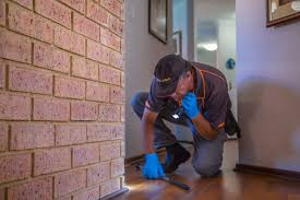 Image result for help minimize the chances of termites infesting your home