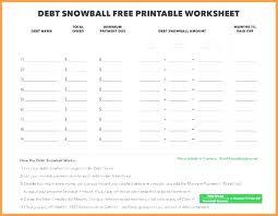 Snowball Payoff Calculator Radioretail Co