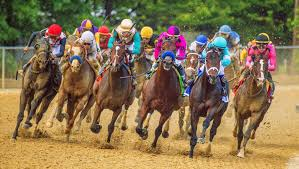 Post Preakness Stakes Three Heating Up Three Cooling Down