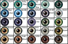 Different Shades Of Blue Eyes Chart Pin By Emmanuel Jackson On Drawings Eye Color Chart