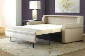 Sleeper Sofa Delivery Why We re the Best in the New York Area