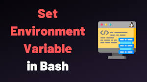 how to set environment variable in bash