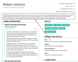 Pick two columns to save space or a single column layout for a traditional application. 3 Job Winning Resume Outline Examples Download