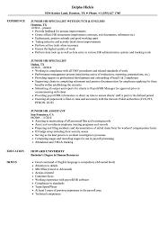 Hr Resumes Samples Junior HR Resume Samples Velvet Jobs 15