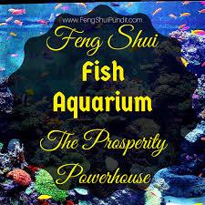 fish aquarium feng shui