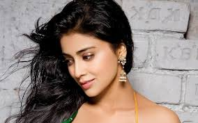 drishyam hindi actress