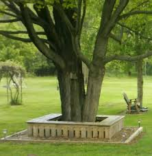 tree seats garden furniture. wanted a bench around this tree for extra seating at sonu0027s birthday parties is seats garden furniture