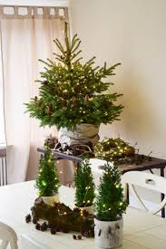 Weihnachtsdeko Mit Lichterketten Batteriebetrieben Und