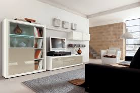 Living Room Cabinet Furniture Living Room Cool Entertainment Center Cabinets Room Design Ideas