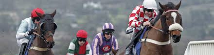 What Are Horse Racing Odds Beginners Guide Betsafe