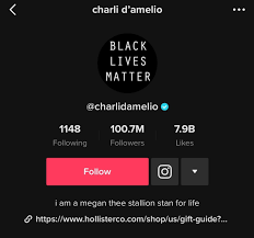Charli D'Amelio Reacts To 100 Million TikTok Followers