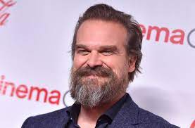 David Harbour's Net Worth: How The ...