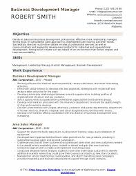 Professional Business Resume Examples Business Development Manager Resume Samples Qwikresume