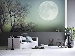 View in gallery full moon wall mural