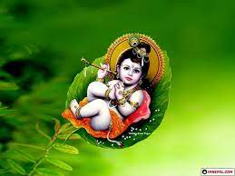 Lord Krishna Images - 50 HD Wallpapers ...